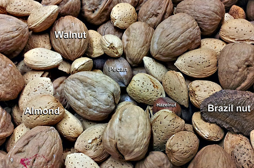 Nuts-and-Seeds-12328096054_758c22b7d4